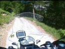 Col du Parpaillon / Frankreich - durch den Wald