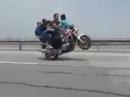 5 Esel und eine Honda - Autobahn Wheelie