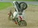 Superbike WM 1999 - A1 Ring Zeltweg (Österreich) Race 1 Zusammenfassung