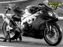 Aprilia RSV4 1100 Factory 2019 - Daten, Ausstattung, Leistung von Motorrad Nachrichten