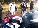 Auffahrunfall Honda vs Peugeot - Crash der seltsamen Art