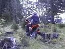 BACHNERs Endurotraining 2008