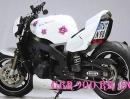 Cativa Ragazza Streetfighter Honda CBR 900 RR Fireblade (SC 28)