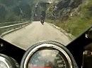 Charly am Nassfeldpass / Passo di Pramollo