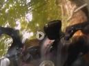 Crash Kurios: Kurve ausgegangen?!? Notausgang Parkplatz