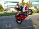 Crazy Martin: Motorrad Double Stoppie schnell und sicher