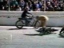 Vorsätzliche und gezielte Zerstörung von Motorrädern - Demolition Derby