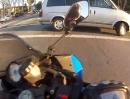 """Motorradunfall provoziert: Bei """"dunkelgelb"""" über die Ampel, und dann mehrfach Glück!"""
