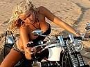 Die geilsten Hintern sitzen auf Harleys, das ist einfach so!