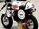 Die schnellste Honda Monkey der Welt von Ivo Kastan