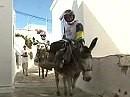 Donkey Cross: Eselrennen und Motocross - eines der letzen Abenteuer ;-)