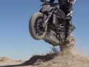 Ducati Diavel artgerecht bewegt - sehr artgerecht Action Yes