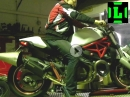 Ducati Monster 821 Dynorun Akrapovic Auspuffanlage + ECU Flash