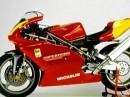 Ducati Supermono - nur für den Renneinsatz