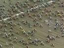 Eines der spektakulärsten Strandrennen: Enduropale Touquet 2009 - Vollgas ist alles.