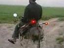 Eselbike - neues Motorrad Modell gesichtet - fast serienreif!