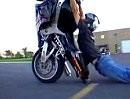 Grazy Boys grazy Stunts