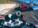 Ferrari F40 vs. BMW S1000RR am Costo - Italiener haschen am Limit