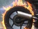 Feuer-Frei-Festival Trailer 2013