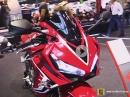 Fireblade's Schwesterlein: Honda CBR650R Rundgang Eicma 2018