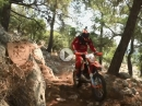 Forest Race - Red Bull Sea to Sky 2016 - Off-Road im Wald