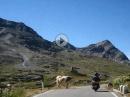 Gavia Pass - Passo di Gavia - ein Erlebnis