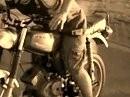 Golden-Riders Trailer Vorgeschmack auf das Jahr 2009