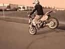 Golden-Riders