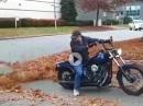 Harley baut Laubbläser mit angenehmen Sound :-)