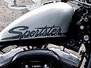 Harley-Davidson 2010 FortyEight Sportster