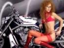 Harley Davidson V-Rod Thunderbird