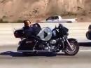 Harley Schläfer - wenn er bremsen muss, ist er schlagartig munter
