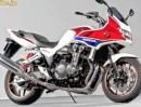 Honda CB1300 Super Bol Dor 2014