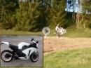 Honda CBR1000RR (SC 59) Flyby Wheelie, Sound: Racefit