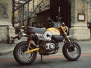 "Honda Monkey ""Neuauflage"" - First Ride des Minibikes by MCN"