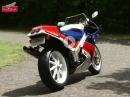 Honda RC30 / VFR750R - 1988 - Eine Ikone! Bildschön