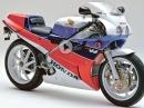 IKONE Honda VFR750R RC30 - ein MUSS für den Fan - die Entwicklung der RC 30