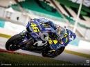 IL DOTTORE 46 - Valentino Rossi - 2019 - Kalender - DIN A3