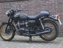 Kawasaki W800 Motortuning mit Leistunsdiagramm