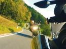 Kawasaki Z900 vs, Kawasaki Z1000R - Triplespeed Biketest - Apocalyptic Rider