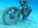 Wer war das? Korallen Motorrad in Akumal Mexiko
