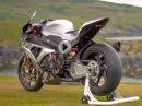 Sagenhafte Bilder: Vollgastier reitet Carbonkuh - BMW HP4 Race