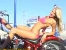Wird sich mir nie erschließen: Harley und Top-Frauen ...