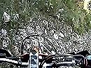 Ligurische Grenzkammstrasse (LGKS): Extrem Enduro - umdrehen ist da nicht mehr!!