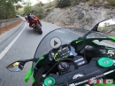 Locals: Kawasaki Ninja ZX10R Vs Ducati Panigale - Savage Mode On