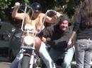 Männer :-) Tittenshow auf Harley Davidson Hupen lupfen ...