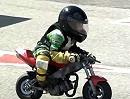 Minibike: Joel #58 - Der Kleine ist der Hammer - früh übt sich wer ein Rossi werden will