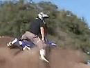 Minibike Madness - Santa Barbara - je kleiner die Mopette umso durchgeknallter der Treiber