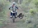 Motocross vs Känguru - Wildunfall Fahrer nix passiert. Schäden beim Känguru unbekannt da flüchtig