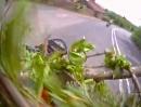 Motorrad Crash: Gegen einen Baum Sturz hilft auch kein Sicherheitstraining
